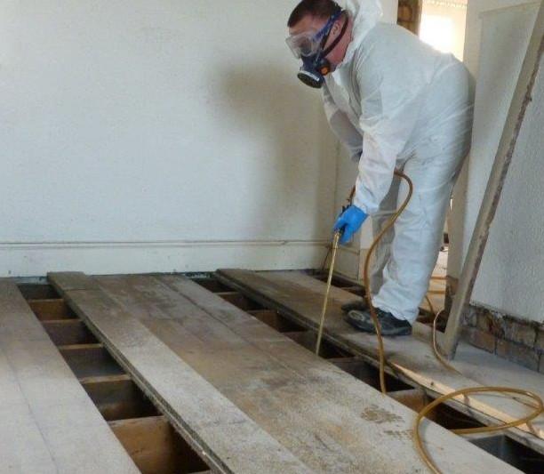 disinfestazione-tarli-legno-pavimenti-casa-como-provincia
